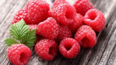 أشهر 3 وصفات لحلويات وخبوزات بالتوت الأحمر