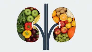 Photo of طعام مفيد للكليتين : أفضل ١٢ طعام للحفاظ على صحة الكليتين