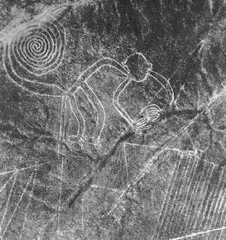 ألغاز حيرت البشرية : الغرض من خطوط نازكا