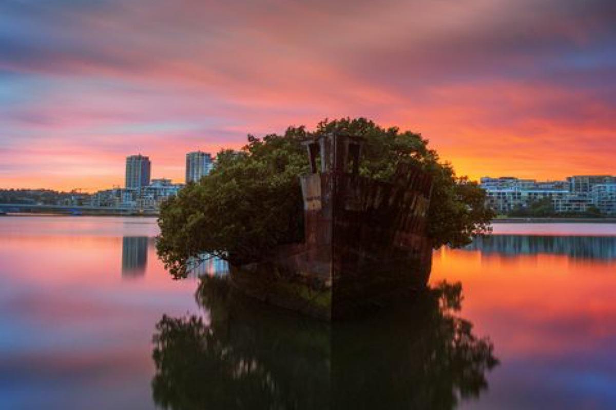 أجمل الأماكن المهجورة في العالم : الغابة العائمة في أستراليا