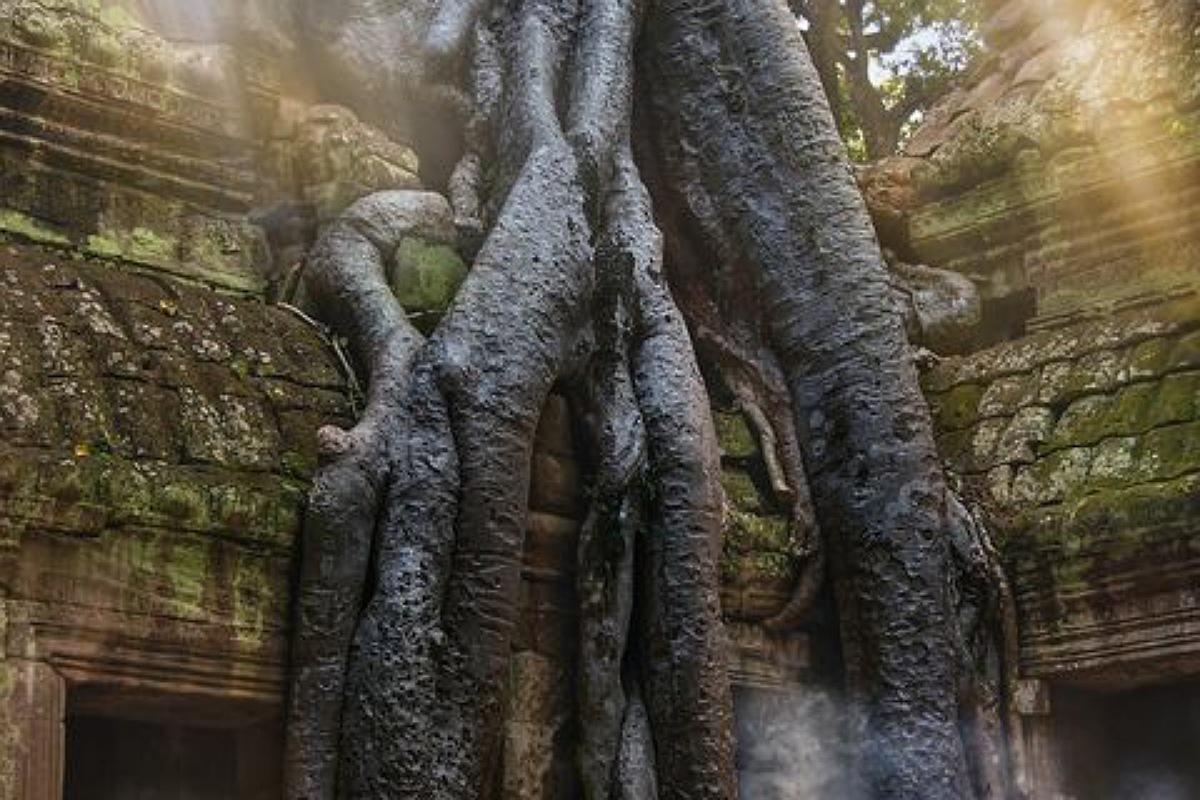 معبد تا بروهم في كمبوديا