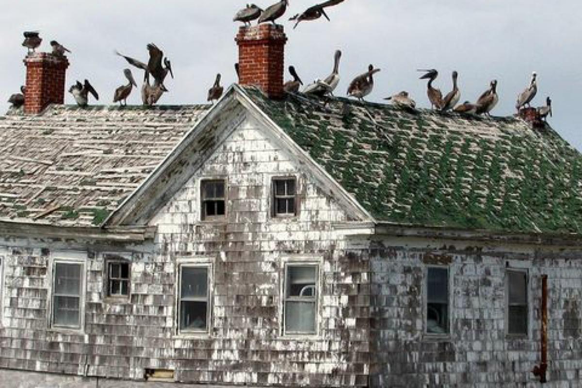 أجمل الأماكن المهجورة في العالم : جزيرة هولندا في ماريلاند