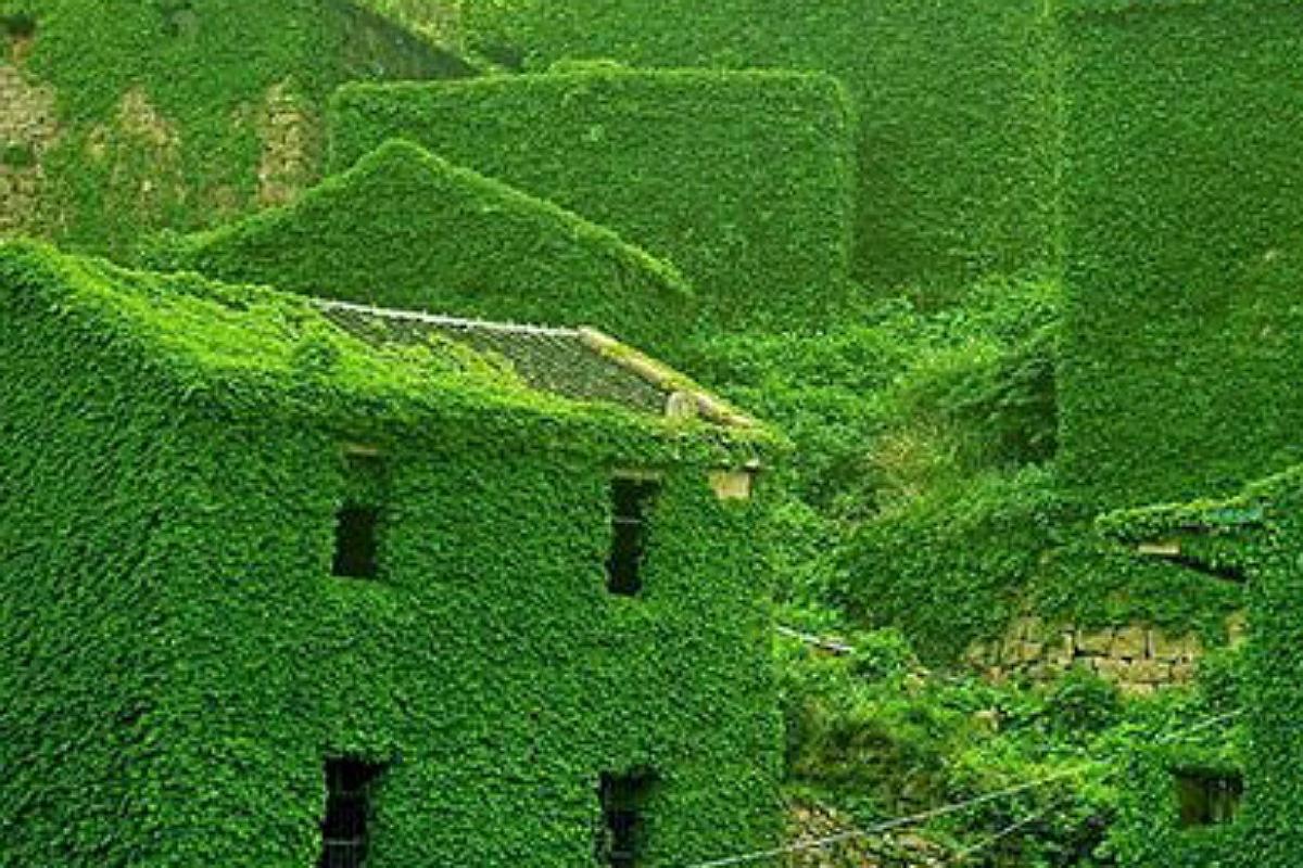 أجمل الأماكن المهجورة في العالم : جزيرة كوجي بالصين