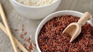Photo of فوائد الأرز البني : إليك أهم ١٠ فوائد صحية للأرز البني