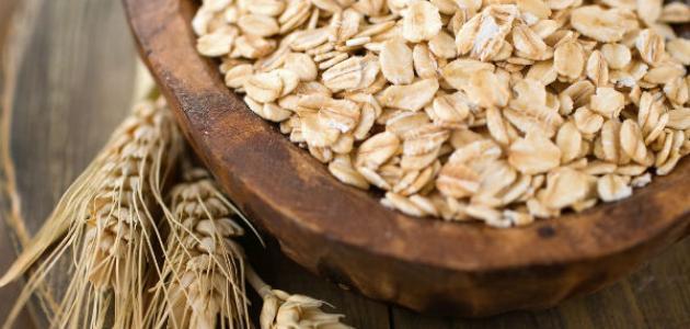 الشوفان أو نخالة الشوفان لتغذية سليمة مقالات منصة القارئ العربى