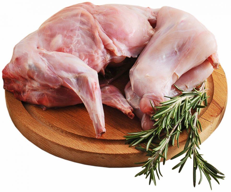 فوائد اكل لحم الارنب