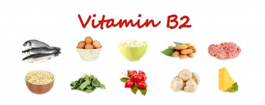 الأطعمة الغنية بـ فيتامين ب ٢