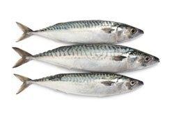 خضروات و فواكه مفيدة للصحة الأسماك