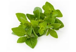 خضروات و فواكه مفيدة للصحة