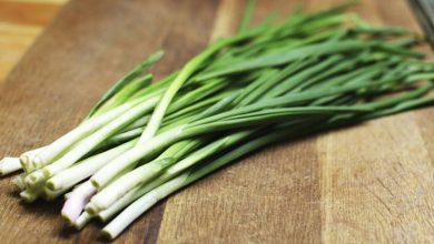 Photo of البصل الأخضر: ما هى الفوائد الصحية للبصل الأخضر؟