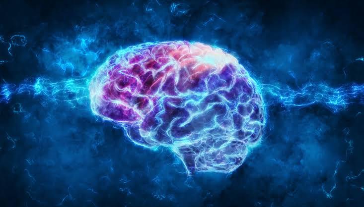فوائد التمر علي الدماغ