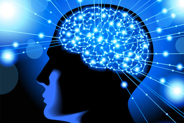 فوائد التين علي الدماغ