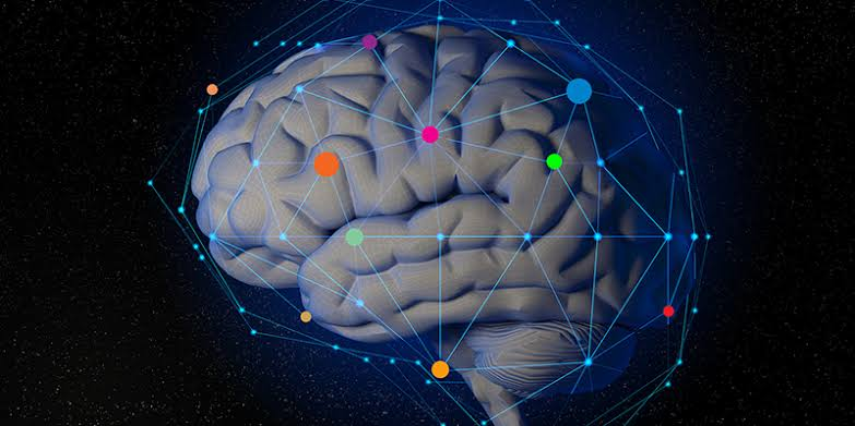 فوائد الجزر الأبيض يعزز صحة الدماغ