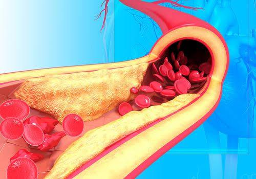 فوائد الجوز البرازيلي يقلل نسبة الكوليسترول في الدم