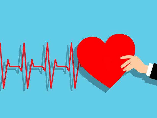 فوائد الحبهان الصحية يعزز صحة القلب