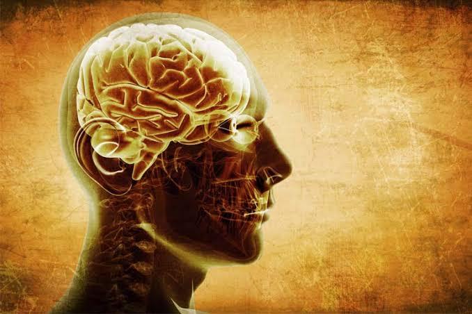 فوائد الزنجبيل علي الدماغ