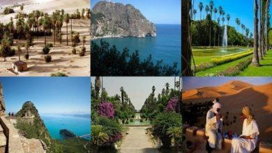 السياحة العربية