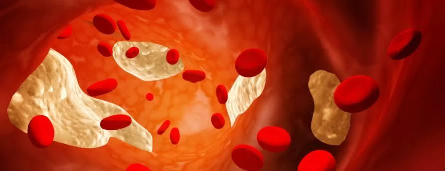 الشعير يقلل من مستويات الكوليسترول