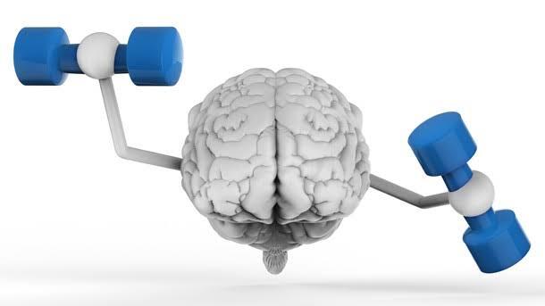 فوائد البسباس علي الدماغ