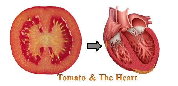 فوائد الطماطم علي القلب