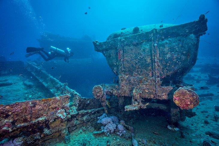 الغوص في البحر الأحمر