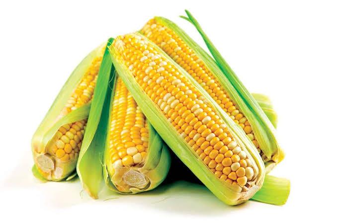 القيمة الغذائية للذرة