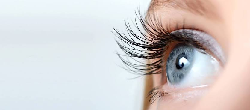 فوائد الكرنب الأجعد علي العين