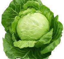 خضروات و فواكه مفيدة للصحة الكرنب