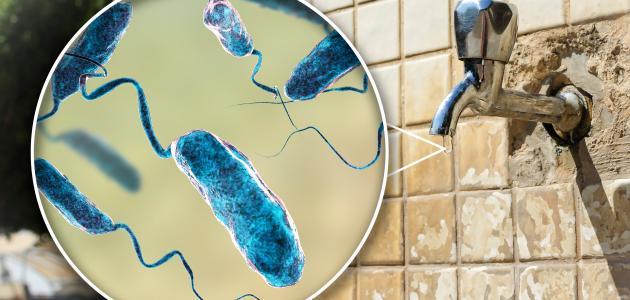 الكوليرا من أشهر الأوبئة فتكًا بالبشرية