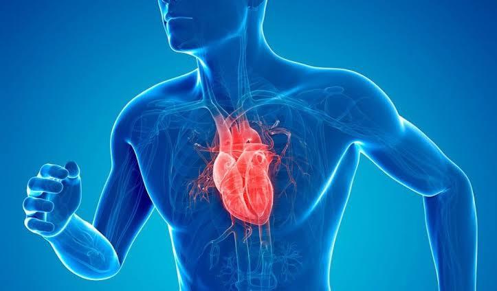 فوائد الكيوي علي القلب