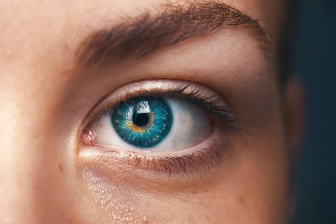 الليمون الأسباني مفيد لصحة العين