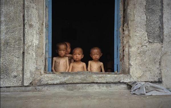المجاعة الكورية الشمالية