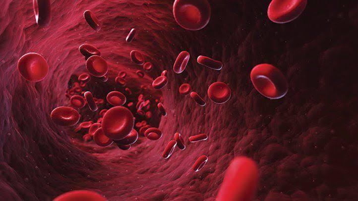 فوائد المورينجا علي مكافحة فقر الدم