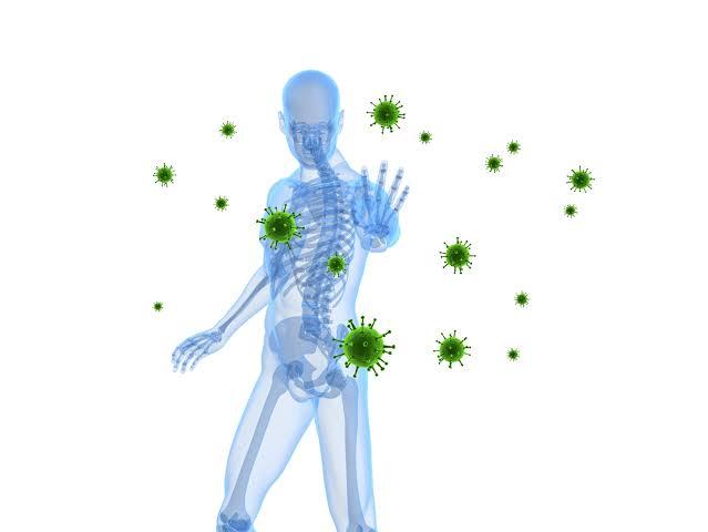 فوائد النحاس للجسم يقوي جهاز المناعة
