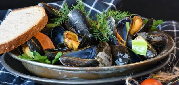 الأطعمة الغنية بـ فيتامين ب ٢ : بلح البحر