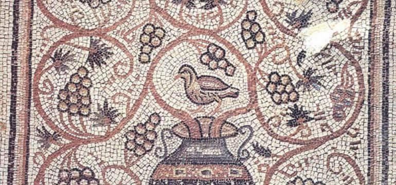 ما هو تاريخ العنب ؟