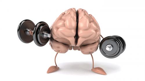 تنمية المهارات و تقوية الذاكرة