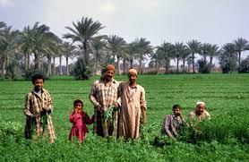 ثقافة الفلاحين المصريين