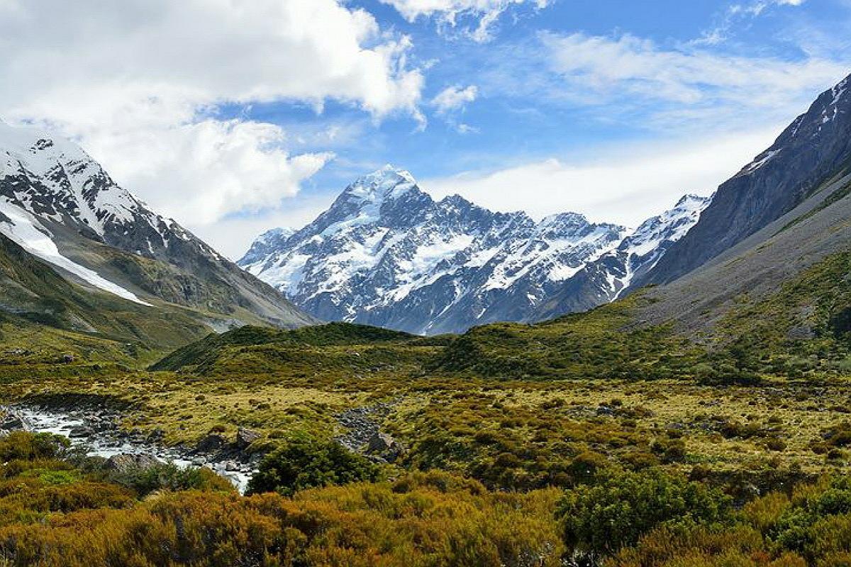 بيئة حيوانات جبال الألب