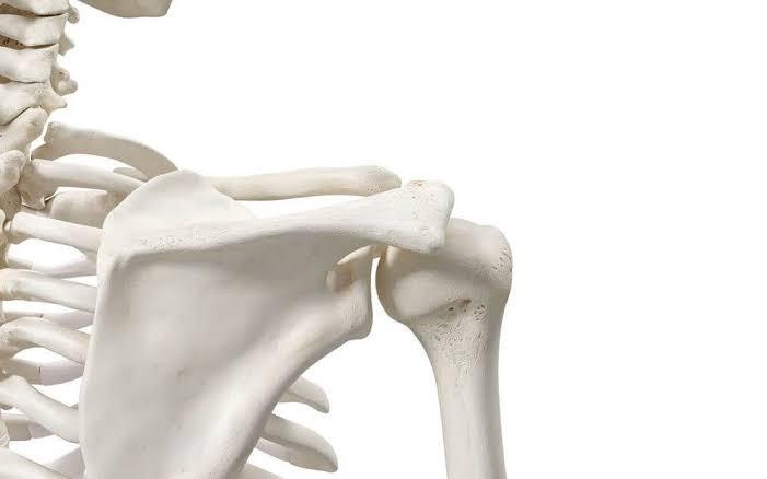 جذور الماكا تعزز صحة العظام