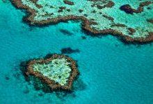 Photo of جزر و بحيرات على شكل قلب من جميع أنحاء العالم