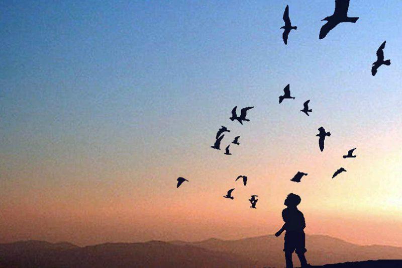 حلم الحرية