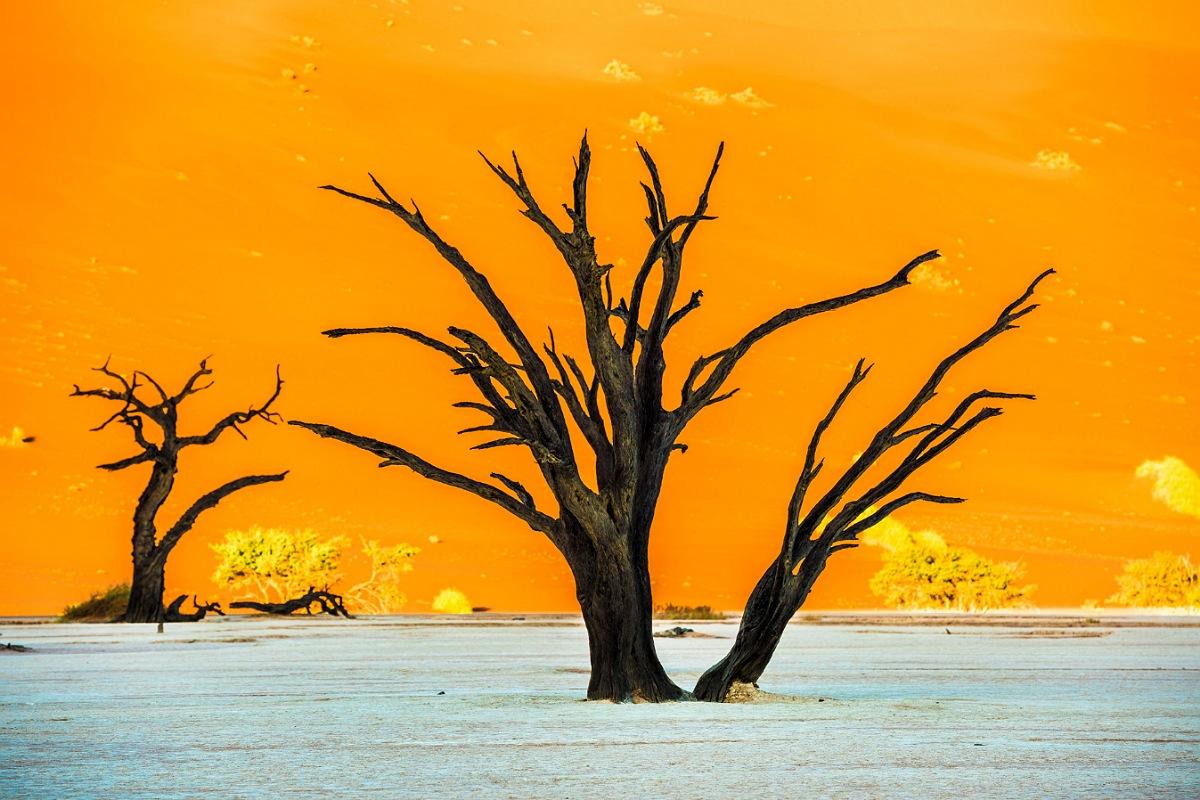حديقة ناميب نوكلوفت الوطنية