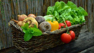 تاثير الغذاء علي الصحة
