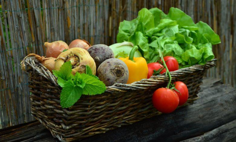 Photo of تاثير الغذاء علي الصحة