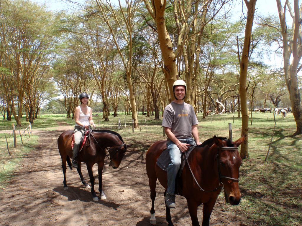 ركوب سفاري في كينيا