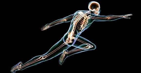 فوائد الفجل الحار يحسن صحة العظام