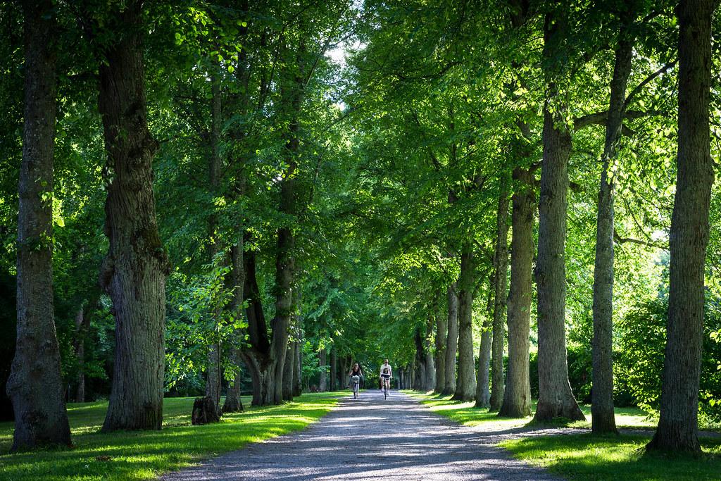 المعالم السياحية في ستوكهولم : منتزه رويال ناشيونال سيتي