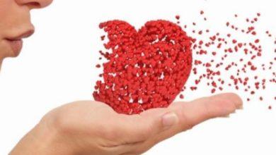 نظرية نشوء الحب