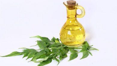 Photo of فوائد زيت النيم للبشرة : 10 إستخدامات هامة للبشرة و الوجه